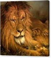 A Lion And A Lioness Canvas Print