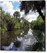 a little bit of Florida Canvas Print
