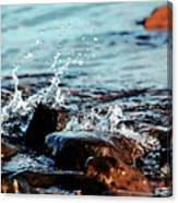 A Little Splash 3 Canvas Print