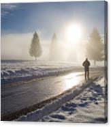A Lonely Winter Canvas Print