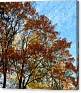A Magnificent Fall Day Canvas Print