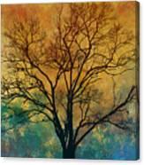 A Magnificent Tree Canvas Print