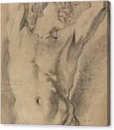 A Male Herm Canvas Print