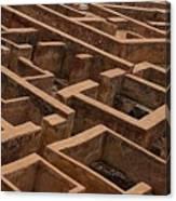 A Maze Life Is A Maze Canvas Print
