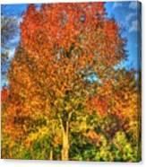 A Michigan Fall-2 Canvas Print