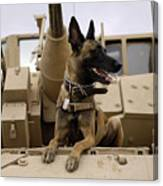 A Military Working Dog Sits On A U.s Canvas Print