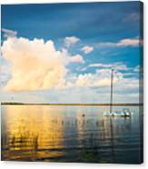 A Moment In A Jump  Canvas Print