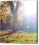A Morning In Fall Canvas Print