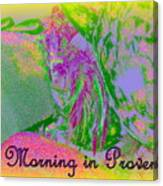 A Morning In Provence Canvas Print