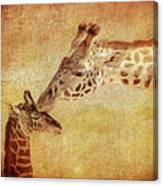 A Mother's Kiss Painted 2 Canvas Print