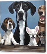 A Motley Crew Canvas Print