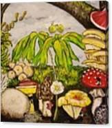 A Mushroom Story Canvas Print
