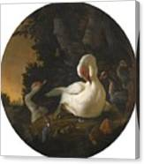 A Mute Swan A Goose And Other Fowl Canvas Print