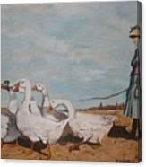 A New Pasture Canvas Print