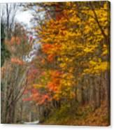 A Newport Autumn Canvas Print