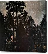 The Forest Night Canvas Print