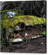 A Non Rolling Car Gathers Some Moss Canvas Print