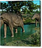 A Pair Of Platybelodon Grazing Canvas Print