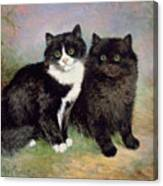 A Pair Of Pussy Cats Canvas Print