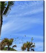 A Pandemonium Of Parrots 2 Canvas Print