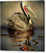A Pelican And His Reflection Canvas Print