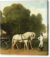A Phaeton With A Pair Of Cream Ponies In The Charge Of A Stable-lad Canvas Print