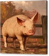 A Pig In Autumn Canvas Print