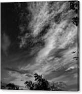 A Plane In The Clouds Canvas Print