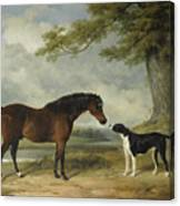 A Pony With A Dog Canvas Print