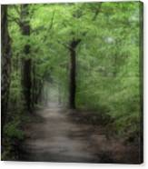 A Preview Of Speulderbos Canvas Print
