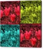 A Quadruple Of Tulips Canvas Print