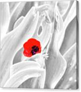A Red Dot Canvas Print