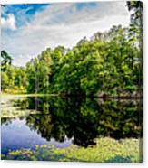A Reflected Forest On A Lake With Lily Pads Canvas Print