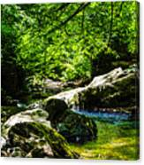 A Relaxing Place To Be Canvas Print