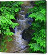 A River Runs Through It Canvas Print