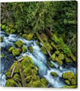 A River's Path Canvas Print