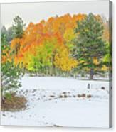 A Roadside Neve  Canvas Print