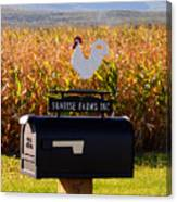 A Rooster Above A Mailbox 1 Canvas Print