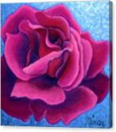 A Rose Is A Rose.. Canvas Print