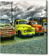 A Row Of Beauties Canvas Print
