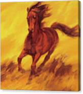 A Running Horse Canvas Print