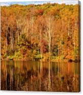 A Season Of Reflection Canvas Print
