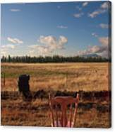 A Seat With A View Canvas Print