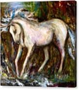 A Secret Place White Hores Painting Canvas Print