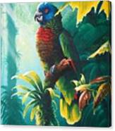 A Shady Spot - St. Lucia Parrot Canvas Print