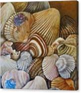 A Shell Of A Good Time Canvas Print