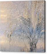 A Shimmering Light Canvas Print