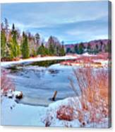 A Snowy Moose River Canvas Print