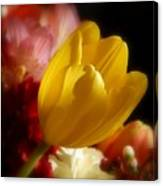 A Softer Shade Of Yellow Canvas Print