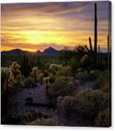 A Southern Arizona Sunset  Canvas Print